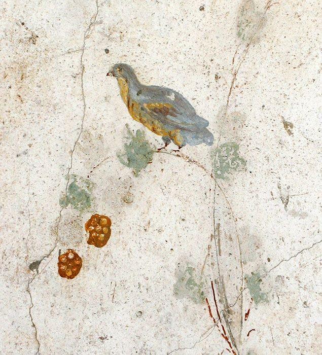 Fresco of a partridge, Villa Poppaea