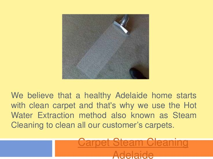 Steam Cleaning By Carpetdrycleaning Via Slideshare