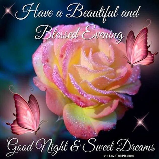 Good night my dear friends, may God bless each of you with a peaceful and safe night. Sending love and hugs to you all.
