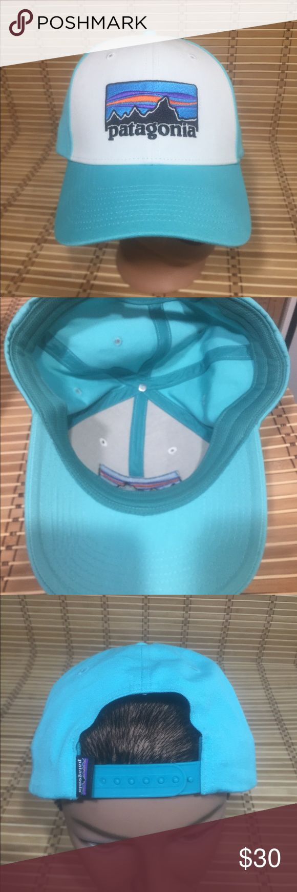 Patagonia SnapBack Patagonia Hat. Snap Back NWOT Patagonia Accessories Hats