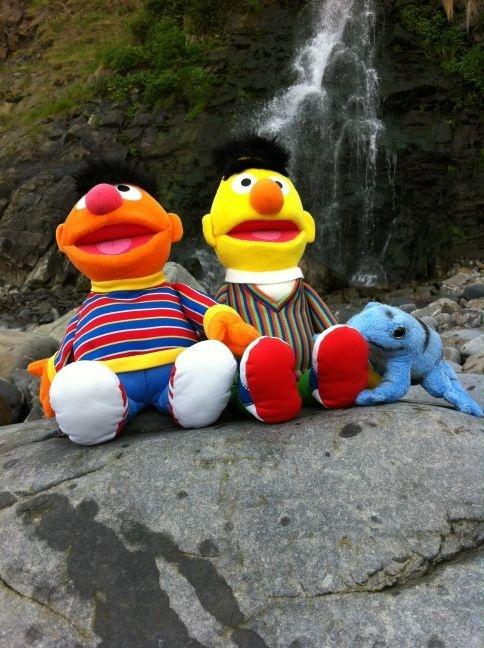 Bert, Ernie and Blue Frog at Bucks Mills waterfall