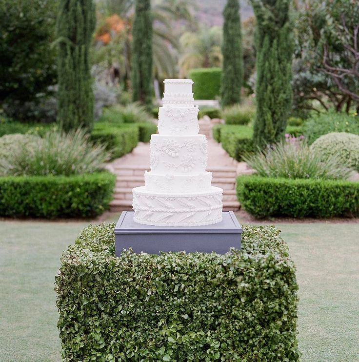 Stunning boxwood cake pedestal by Laurie Arons (@lauriearons). Photo by Jose Villa.