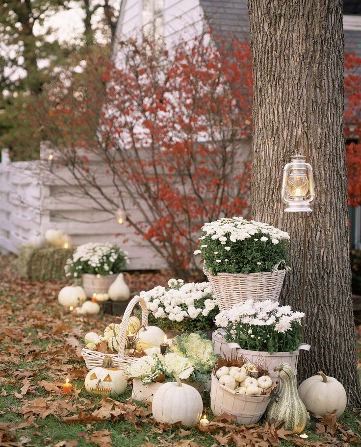 31 Amazing fall decorating ideas using white pumpkins