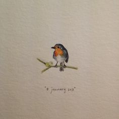 Day 8 : A robin for Robyn. Happy birthday!