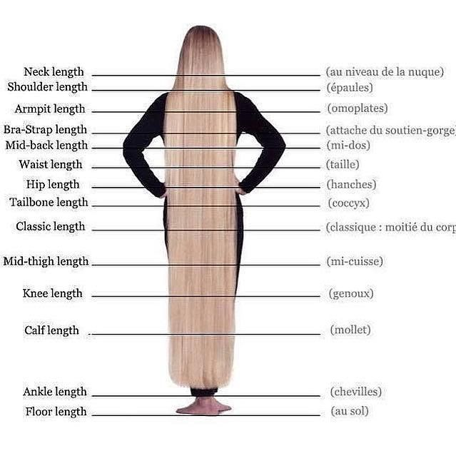 Hey ladies, what's your hair length? Comment below⬇️ follow @hairsalonfeed for hair tips