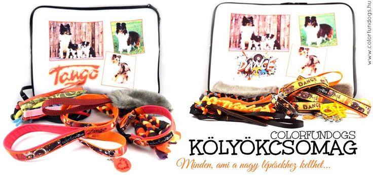 Puppy pack www.colorfundogs.hu