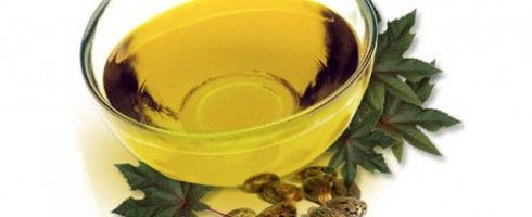 ERBORISTERIA DELL'ORTICA: L'Olio di Ricino (Ricinus communis) trova indicazione in cosmetologia soprattutto per migliorare i capelli e le ciglia.