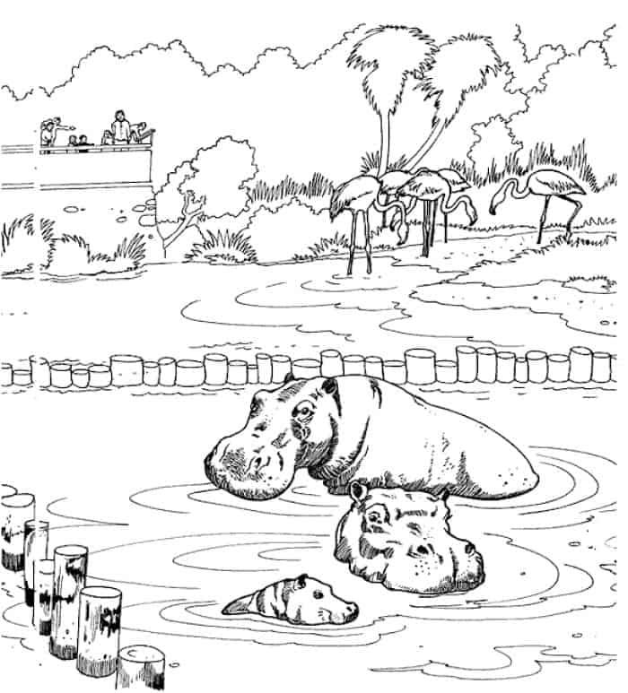 Zoo Animals Coloring Pages Zoo Animal Coloring Pages Zoo Coloring Pages Animal Coloring Pages