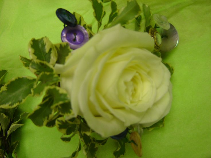 Roses buttonhole