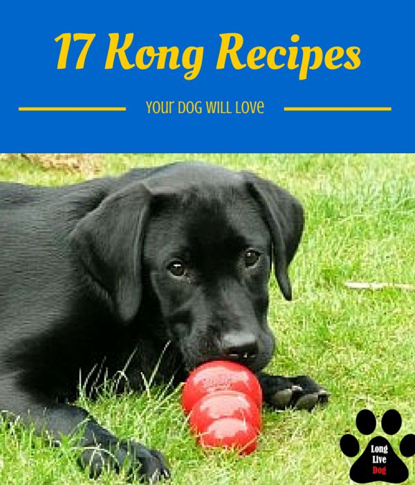 17 Different Kong Recipes That Your Dog Will Absolutely Love