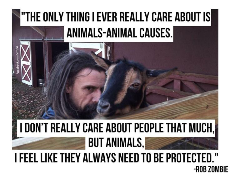 Rob Zombie quote Way to go, Rob! I care about people too though...except the ones who are mean to animals.