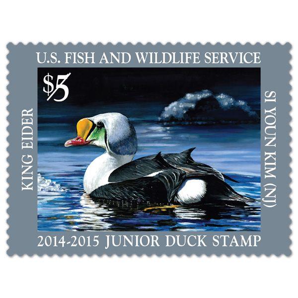 2014 Duck Print Federal