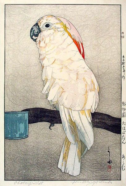 Hiroshi Yoshida (Japanese), Obatan Parrot, woodblock print, c. 1926.: Cockatoo, Blocks Prints, Japan Art, Toshi Yoshida, Woodblock Prints, 1926, Hiroshi Yoshida, Birds, Obatan Parrots