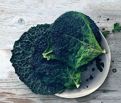 SAVOY CABBAGE CHIPS http://www.epicurious.com/recipes/food/photo/Savoy-Cabbage-Chips-51143900