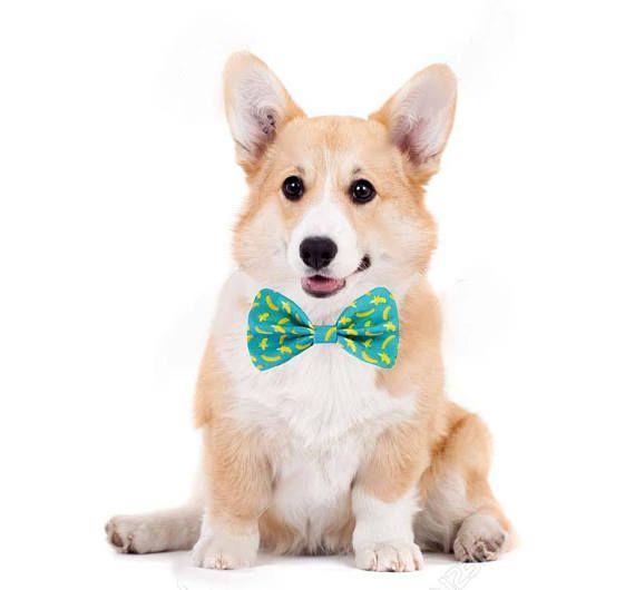 Dog Bow Tie / Cat Bow Tie / Velcro Bow Tie / Collar Bow Tie /