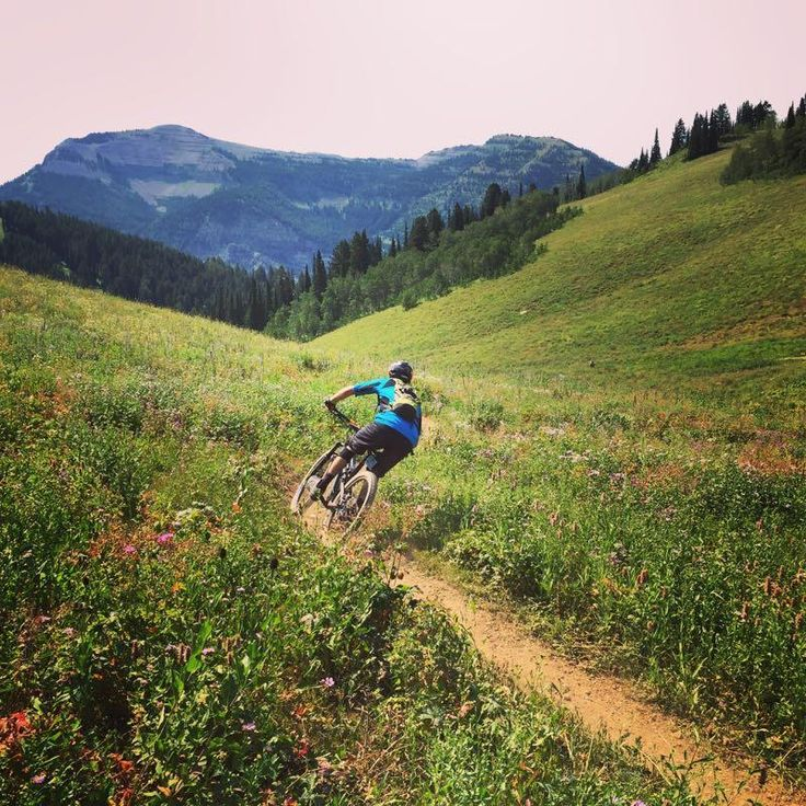 64 Best Mountain Bike Trails Images On Pinterest Mountain Bike