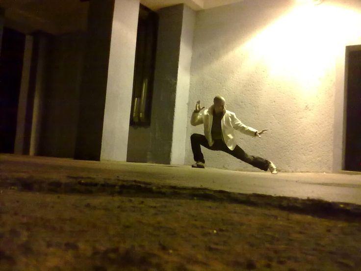 karate-do 2