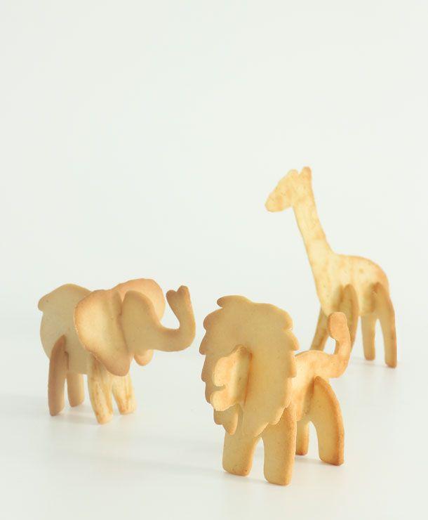 2 todos safari