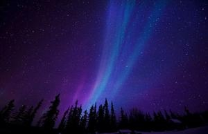 You have to follow this blog, it's really awesome!Night Skies, Trav'Lin Lights, Northernlights, Pretty Colors, Northern Lights, Aurora Borealis, Night Time, My Buckets Lists, Night Sky