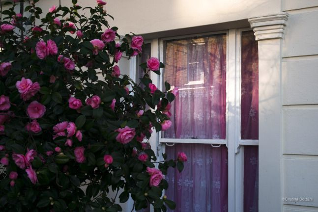 Inside, outside (London)/2