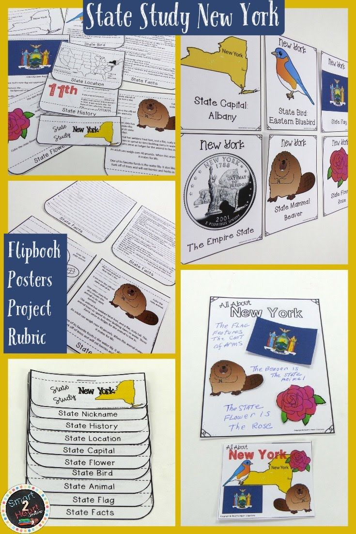 New York State Study Flap Book With Posters And Projects Flap