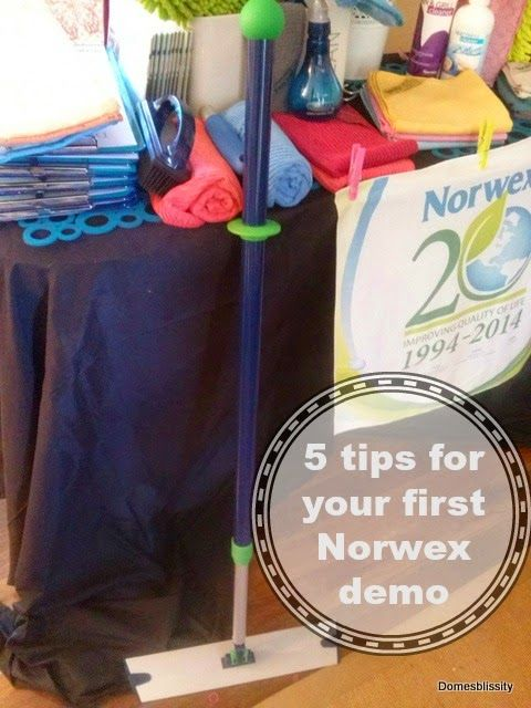 Domesblissity: 5 tips for your first Norwex demonstration