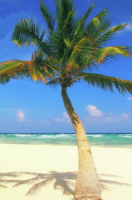 Playa del Carmen Beach