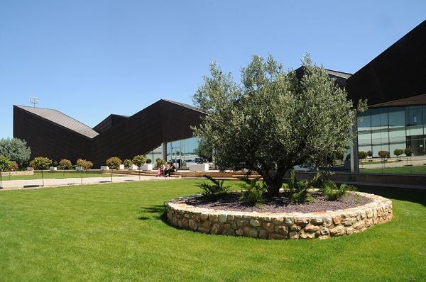 Campus de Alzira