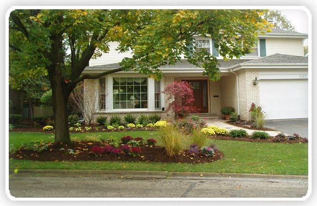 Landscaping front yard design landscaping plus ideas for Nice trees for front yard