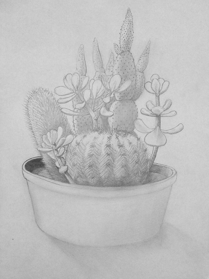 Kaktuszok és gumifák
