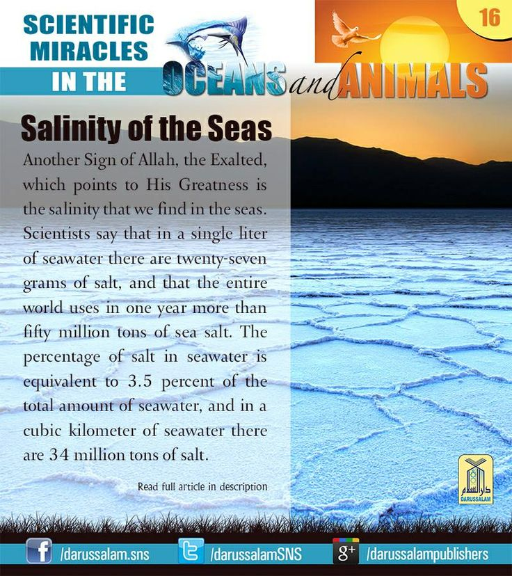"[from ""Scientific Miracles in the Oceans Animals"" by ""Yusuf Al-Hajj Ahmad"", published by Darussalam, 2010]"