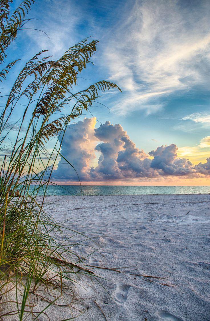 Perfect and Beautiful - Sarasota, Florida
