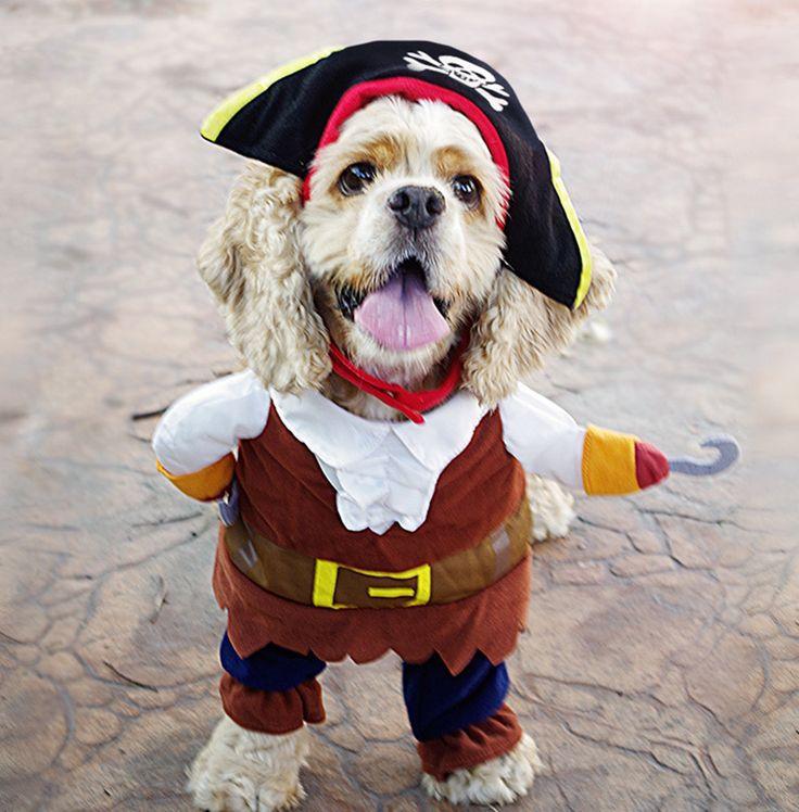 Pirate Costume For Dog/ Cat //Price: $24.00 & FREE Shipping //     #animals #petworld #ilovemycat #catoftheday
