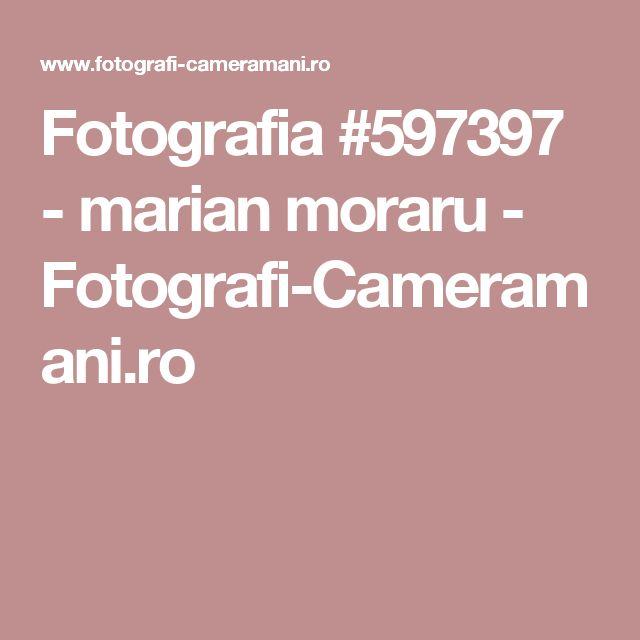Fotografia #597397 - marian moraru - Fotografi-Cameramani.ro