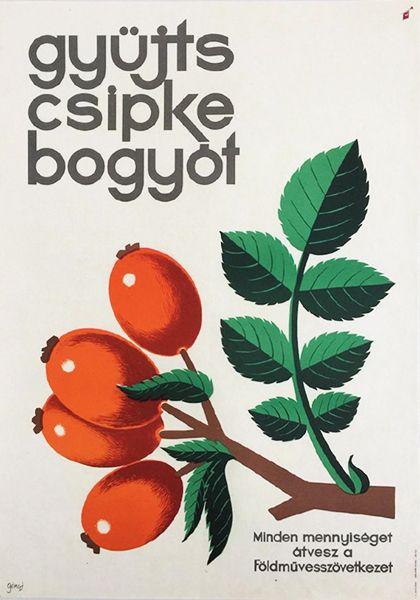 Gönczi_Gebhardt_Tibor_-_Collect_rosehips_-_the_Agricultural_Cooperative_1960s_original_Hungarian_propaganda_poster.jpg (420×600)