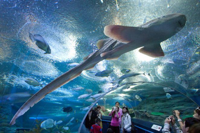 Top 10 Attractions at Jomtien Beach Pattaya Thailand