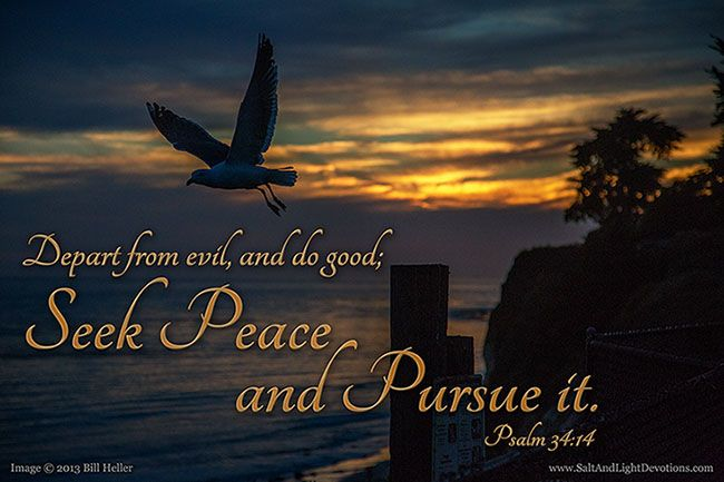 17 Best Images About Good Vs Evil On Pinterest: 14 Depart From Evil, And Do Good; Seek Peace, And Pursue