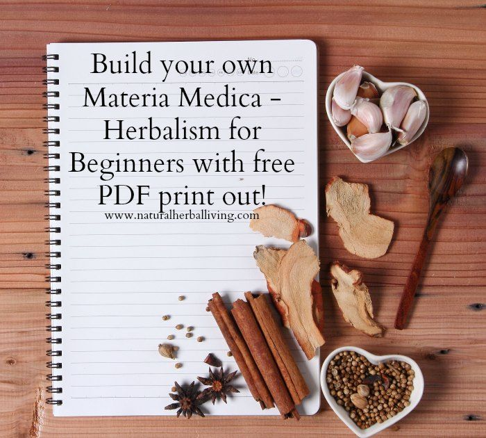 Build your own Materia Medica with free PDF print out. Herbalism, herbalist basics. Learning herbs.