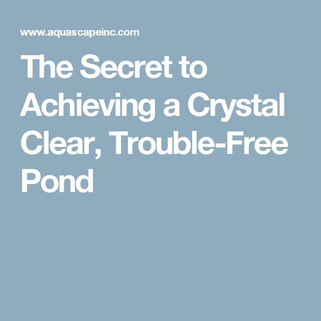how to clean pond pump filter