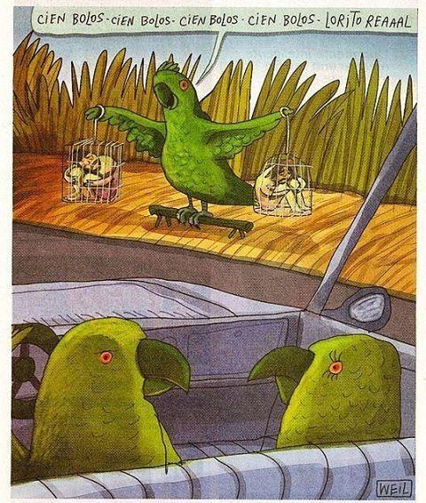El tráfico ilegal de fauna silvestre no solo se ve mal también hace mucho daño a la continuidad de las especies y al equilibrio ecológico de nuestros ecosistemas.  Cada vez que te encuentras a un vendedor de animales en la carretera te dice cuánto cuesta el animalito y un de cuentos más pero hay muchas historias que no te cuenta y hoy nosotros te vamos a contar algunas.  Para que esos animales llegaran a manos del traficante tuvieron que ser extraídos de su hábitat natural. Él te dirá que…