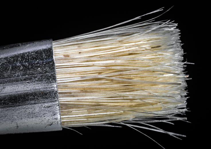 Pinsel / Brush