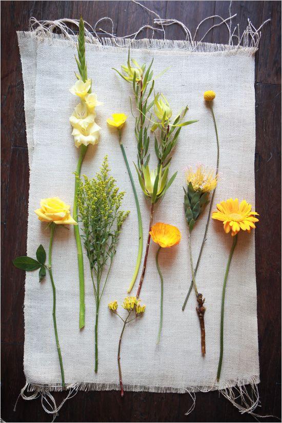 Yellow flowers / Wedding Chicks