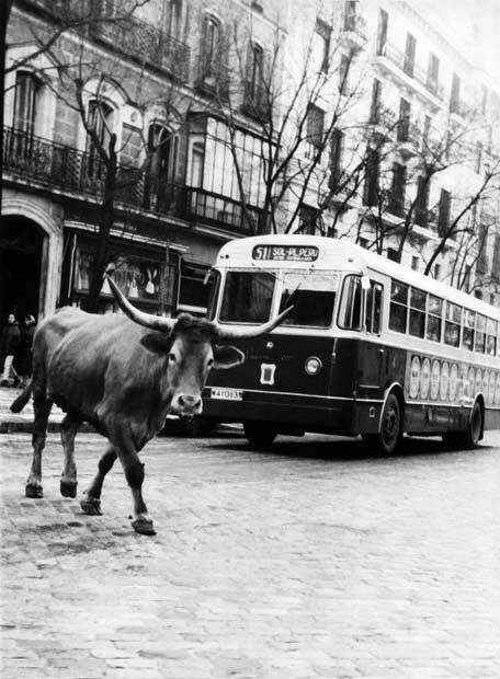 Autobús 51, de Puerta de Sol a la Plaza del Perú (Prolongación de General Mola) - Portal Fuenterrebollo