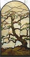 torrey pines tree glass design - Bing Images