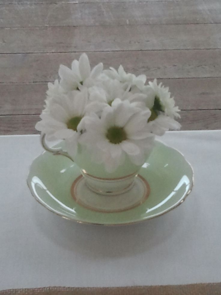 T cup with daisies