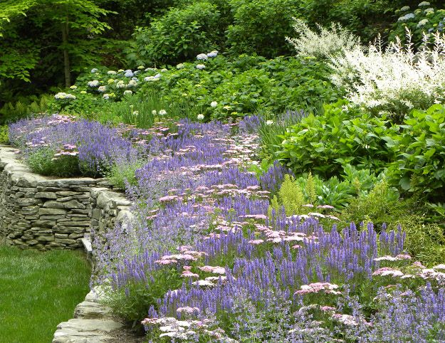 Exceptional East Hampton Landscaping (Works In Progress)   Hamptons Landscaping /  Summerhill Landscapes, Sag