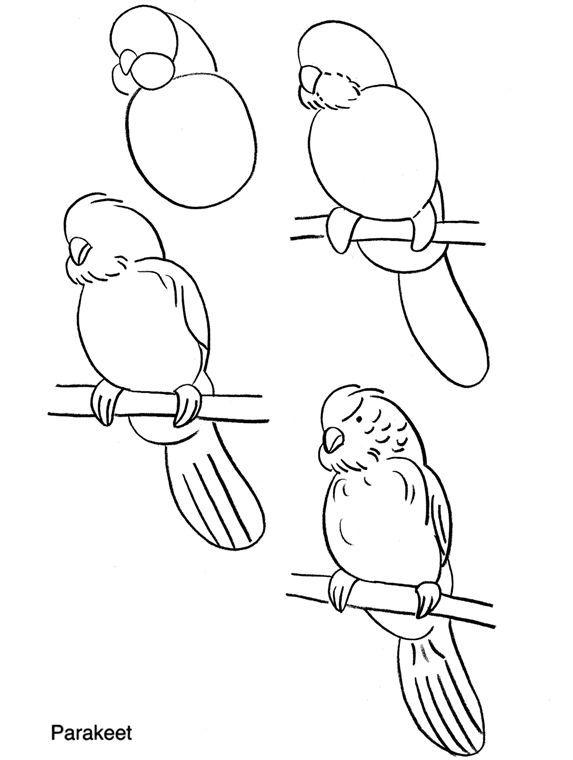 Apprendre dessiner des perruches 3781 dessine moi un - Mouton a dessiner ...