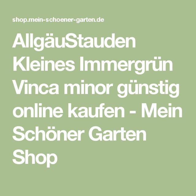 AllgäuStauden Kleines Immergrün Vinca minor günstig online kaufen - Mein Schöner Garten Shop