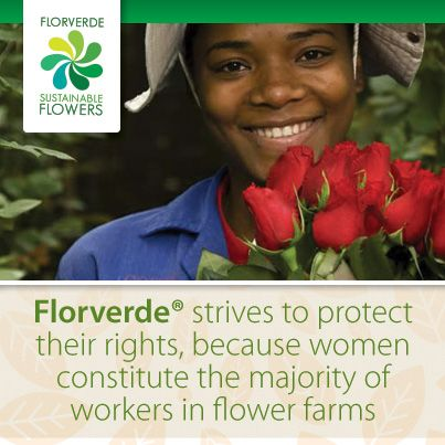 Womens rights; #Florverde® strives to protect their rights, because #women constitute the majority of #workers in flower farms.