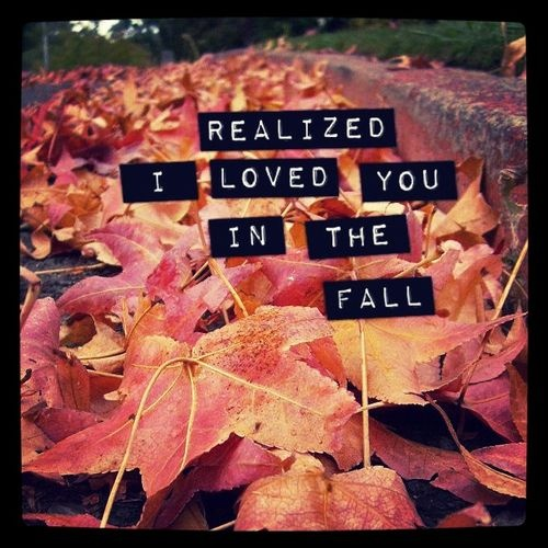 (taylor swift,county,leaves,photography,lyrics,fall)